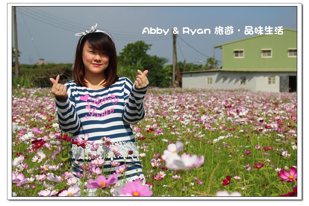 newIMG_7821.jpg