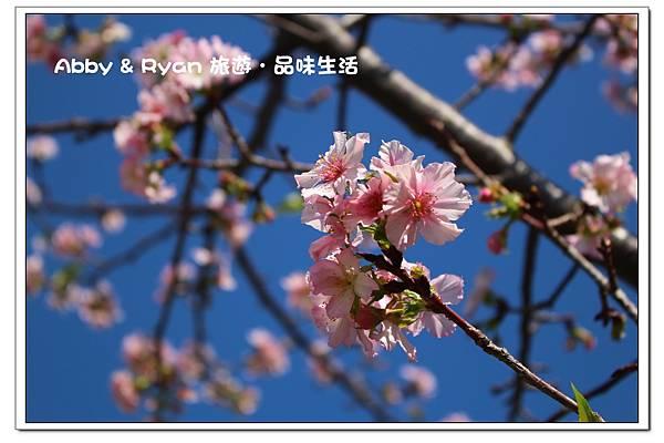 newIMG_8242.jpg