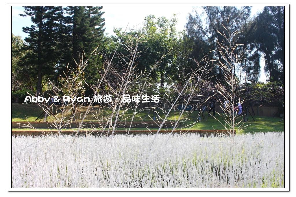 newIMG_8248.jpg