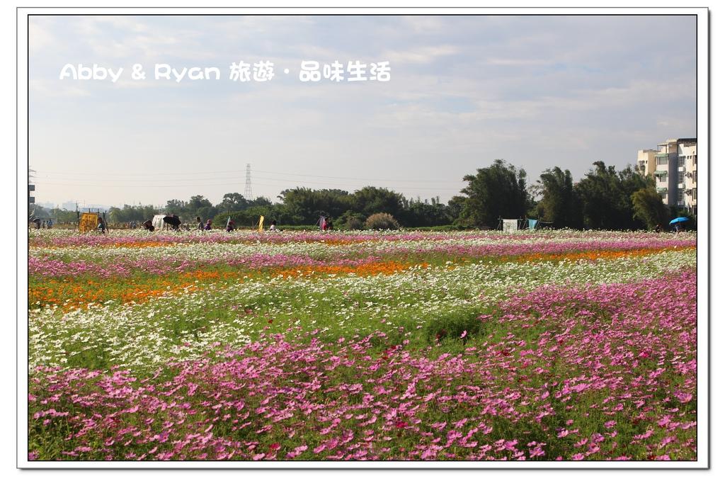 newIMG_8501.jpg