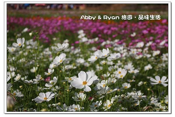 newIMG_8505.jpg
