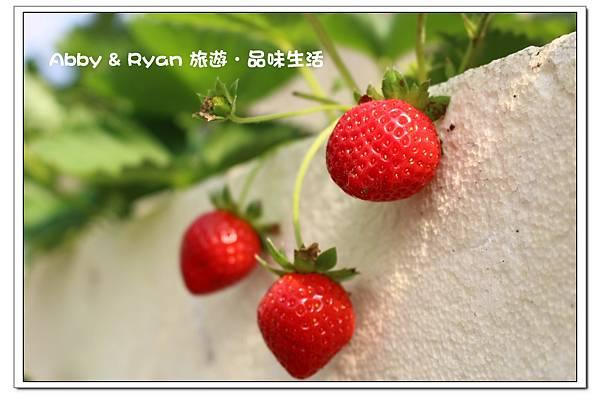 newIMG_9567.jpg