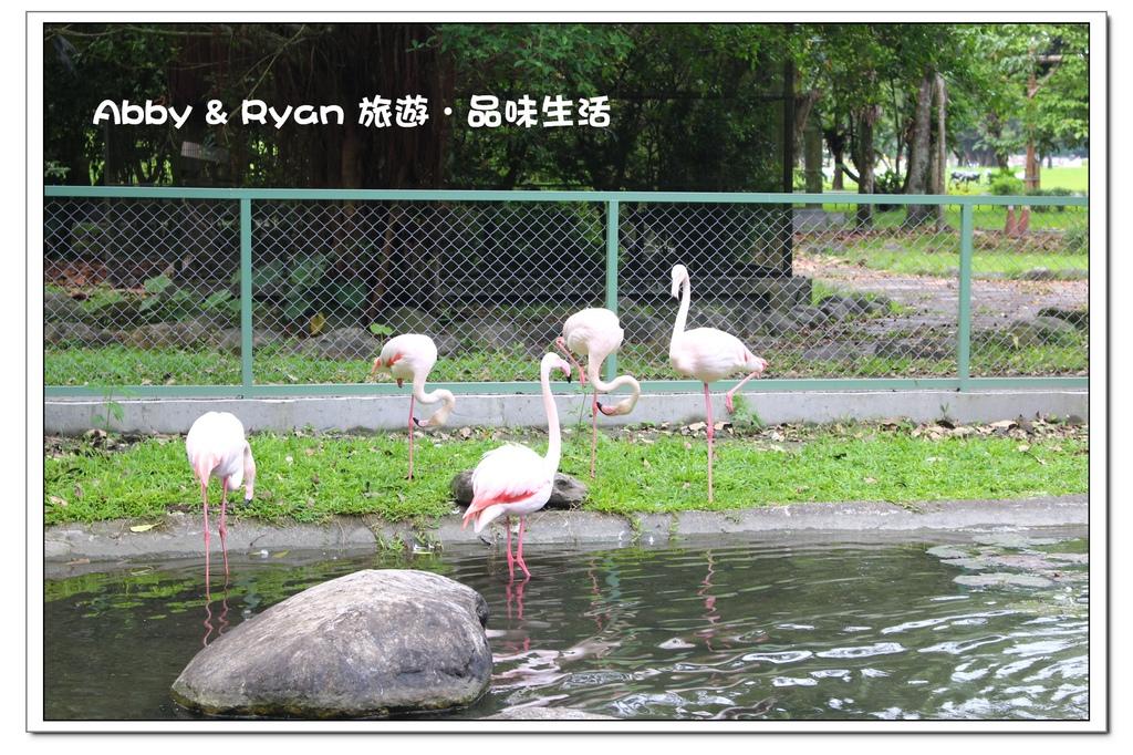 newIMG_1692.jpg