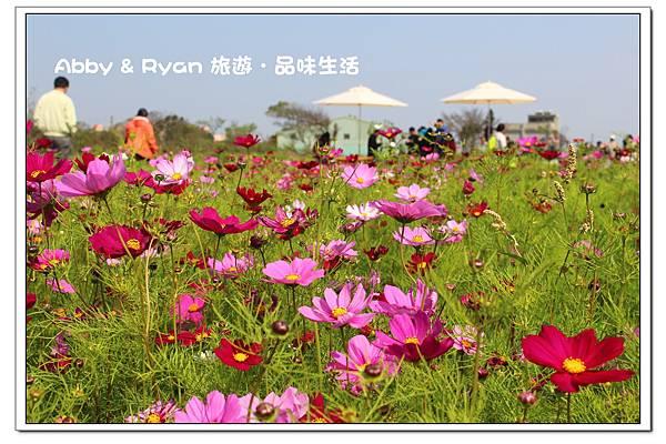 newIMG_1627.jpg