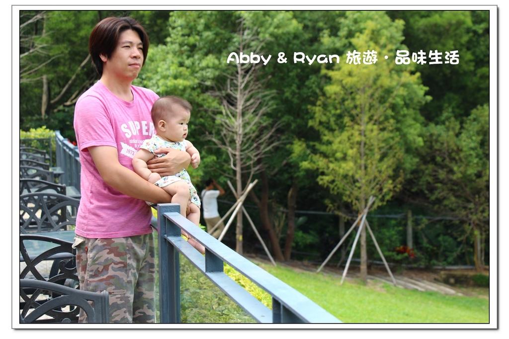 newIMG_6904.jpg