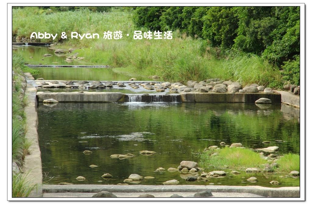 newIMG_8887.jpg