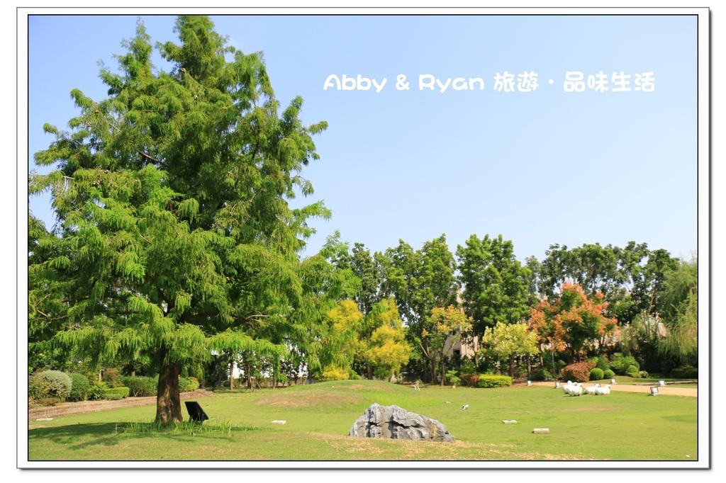 newIMG_9223.jpg
