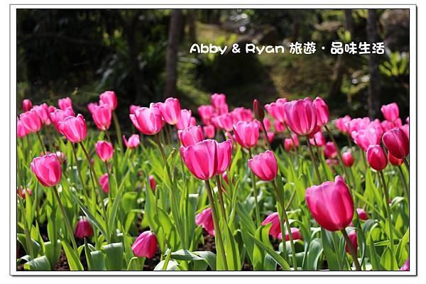 newIMG_0254.jpg