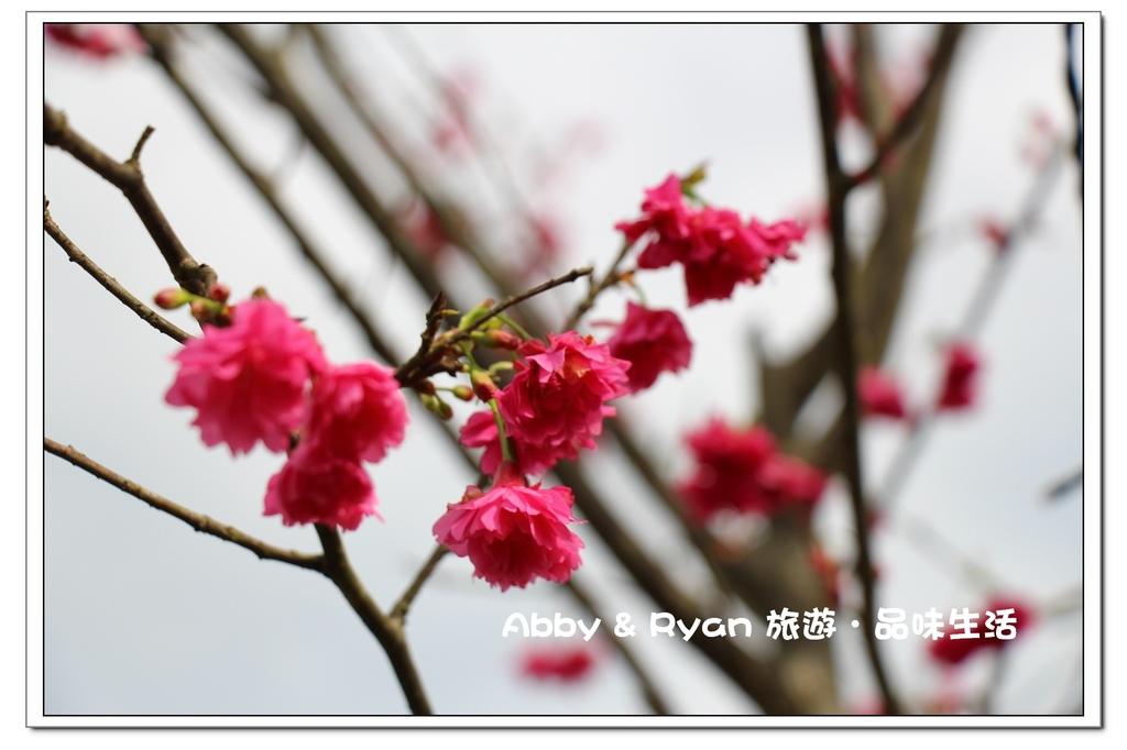 newIMG_0562.jpg