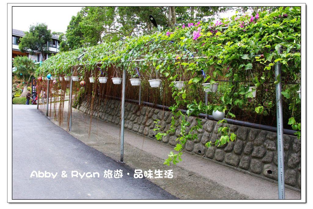 newIMG_9674.jpg