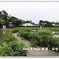 newIMG_0579.jpg