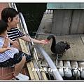 newIMG_0598.jpg