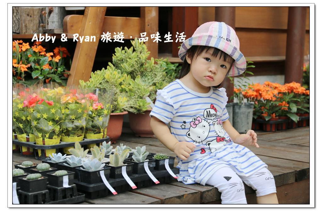 newIMG_0211.jpg