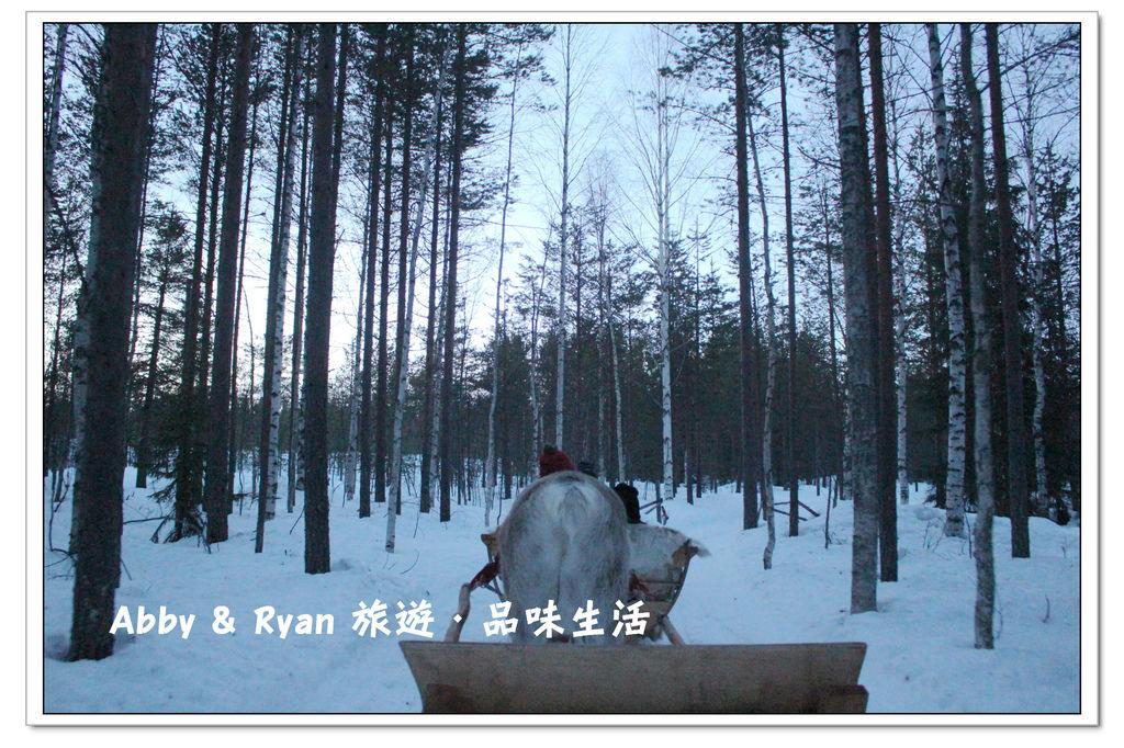 newIMG_5868.jpg
