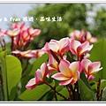 newIMG_0580.jpg