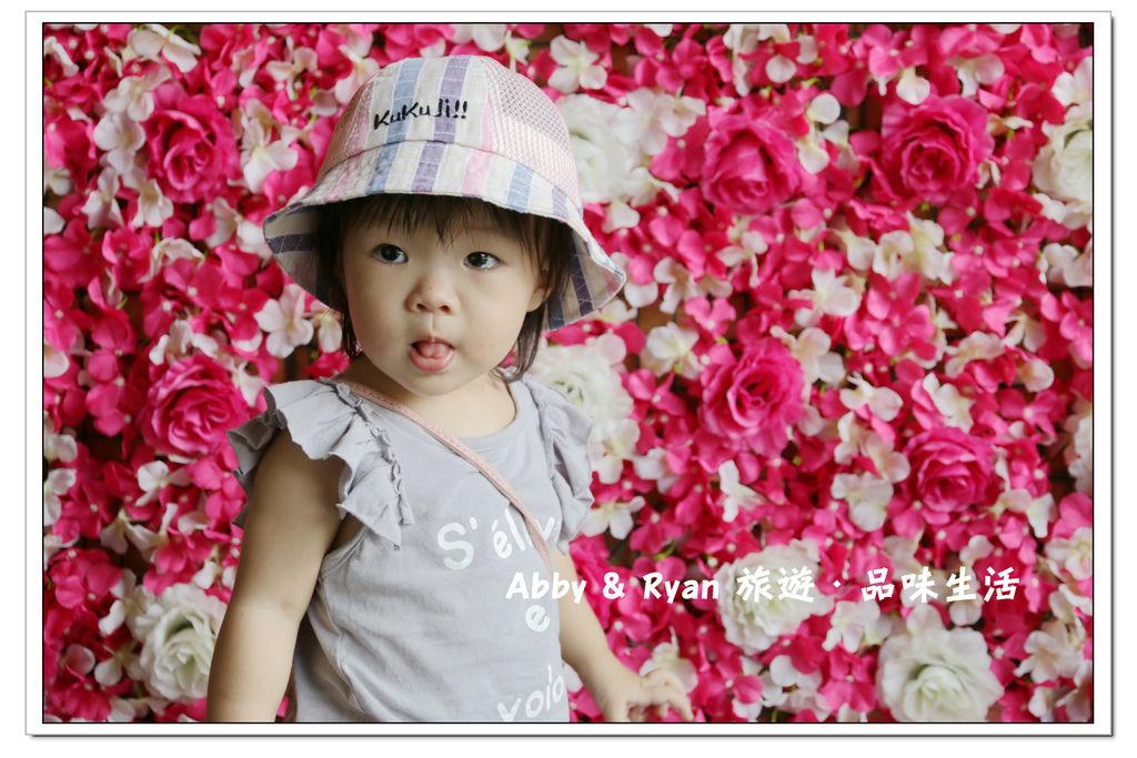 newIMG_0736.jpg