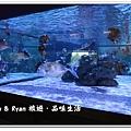 newIMG_0048.jpg