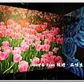 newIMG_0369.jpg