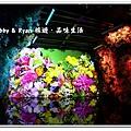 newIMG_0383.jpg