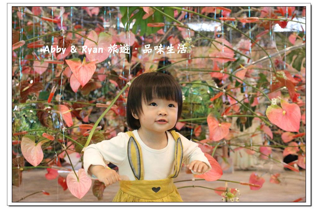 newIMG_0490.jpg