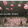 newIMG_0493.jpg
