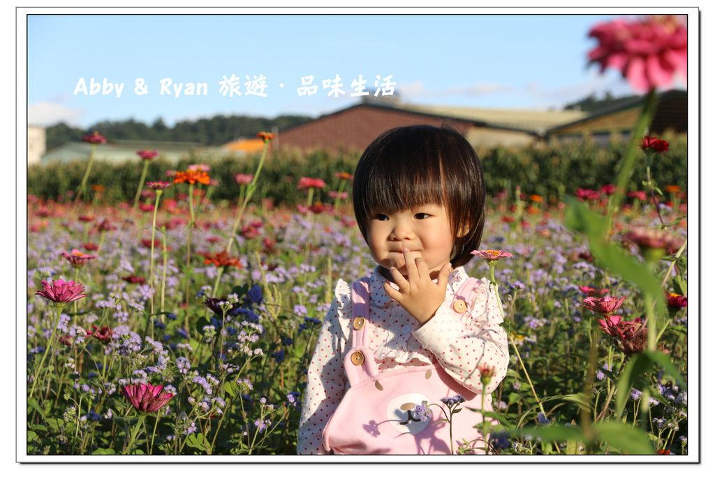 newIMG_0909.jpg