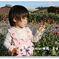 newIMG_0919.jpg