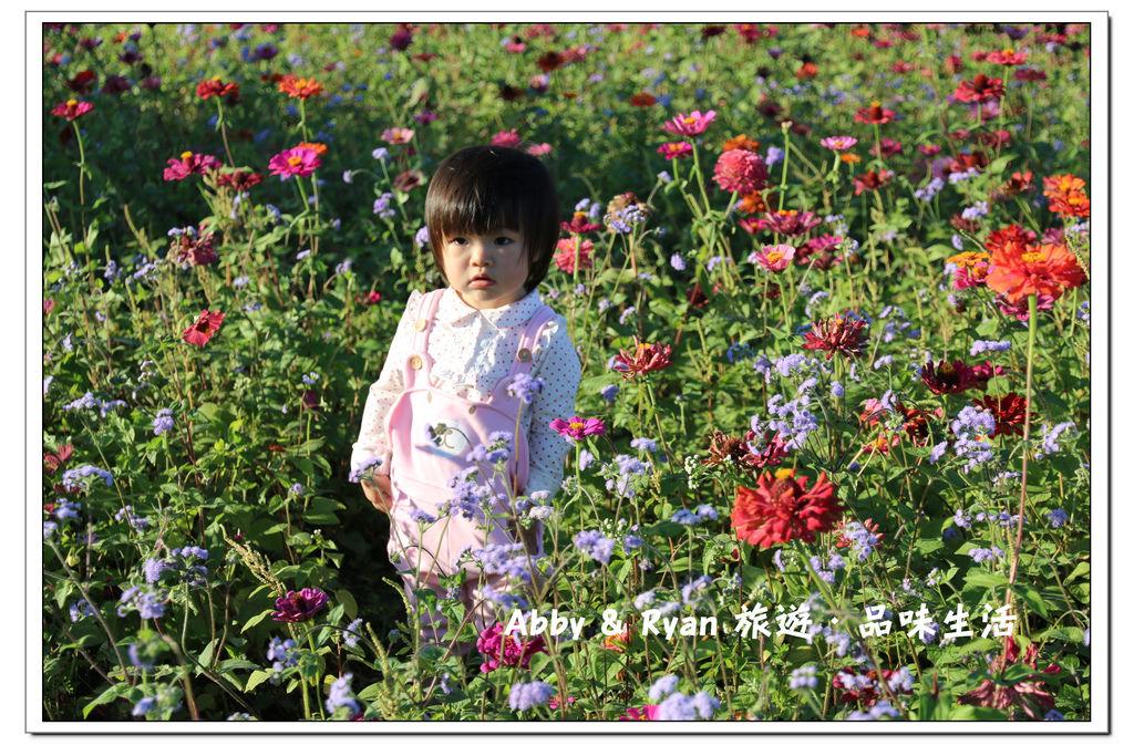 newIMG_0937.jpg
