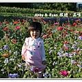 newIMG_0942.jpg
