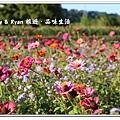 newIMG_0948.jpg