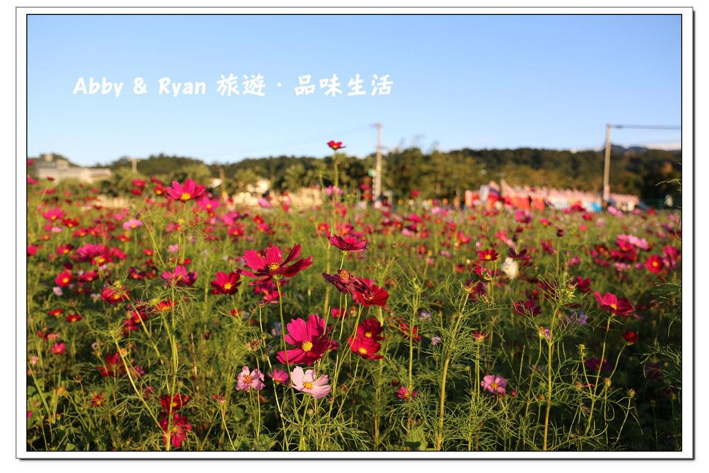 newIMG_1023.jpg
