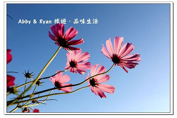 newIMG_1027.jpg