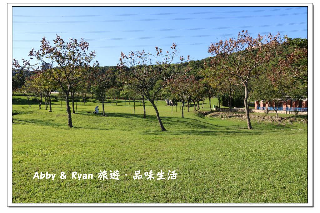 newIMG_0813.jpg