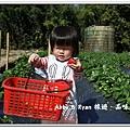 newIMG_1148.jpg