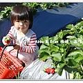 newIMG_1175.jpg