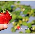 newIMG_1195.jpg