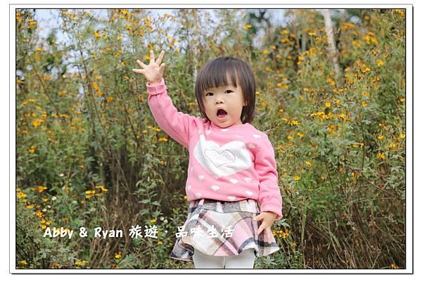 newIMG_0073.jpg