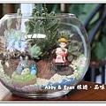 newIMG_0537.jpg