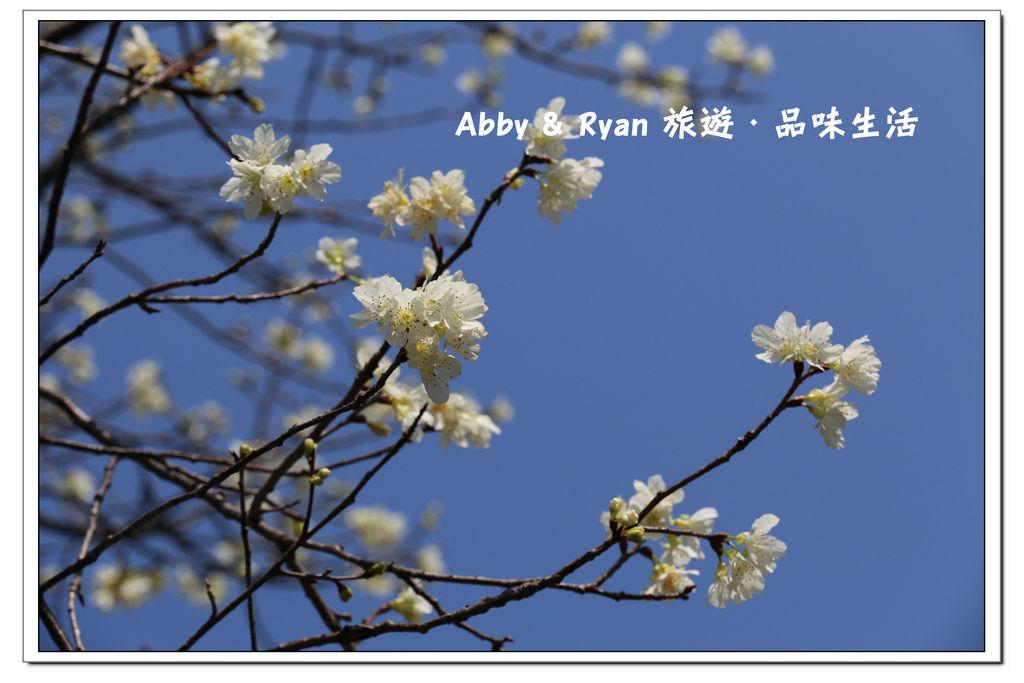 newIMG_0434.jpg