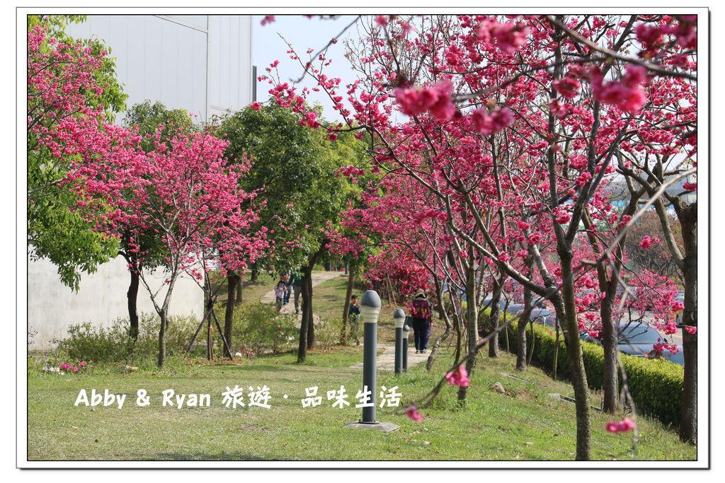 newIMG_0474.jpg