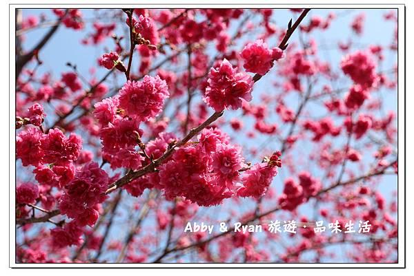 newIMG_0324.jpg