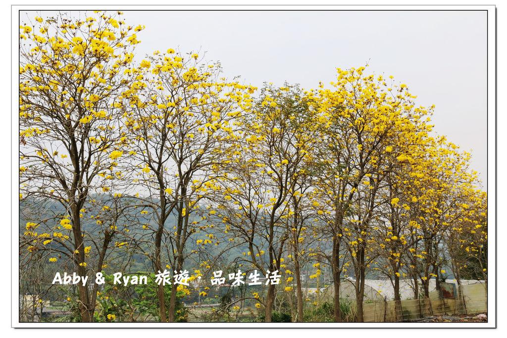 newIMG_0833.jpg