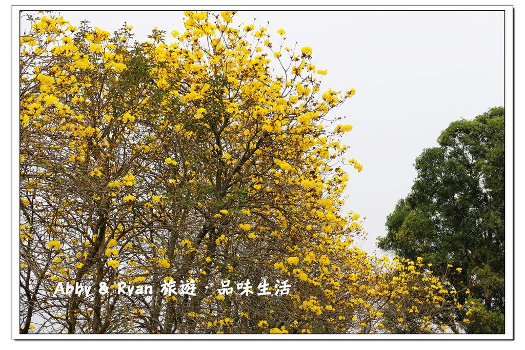 newIMG_0871.jpg