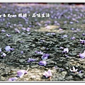 newIMG_0085.jpg