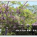 newIMG_0109.jpg