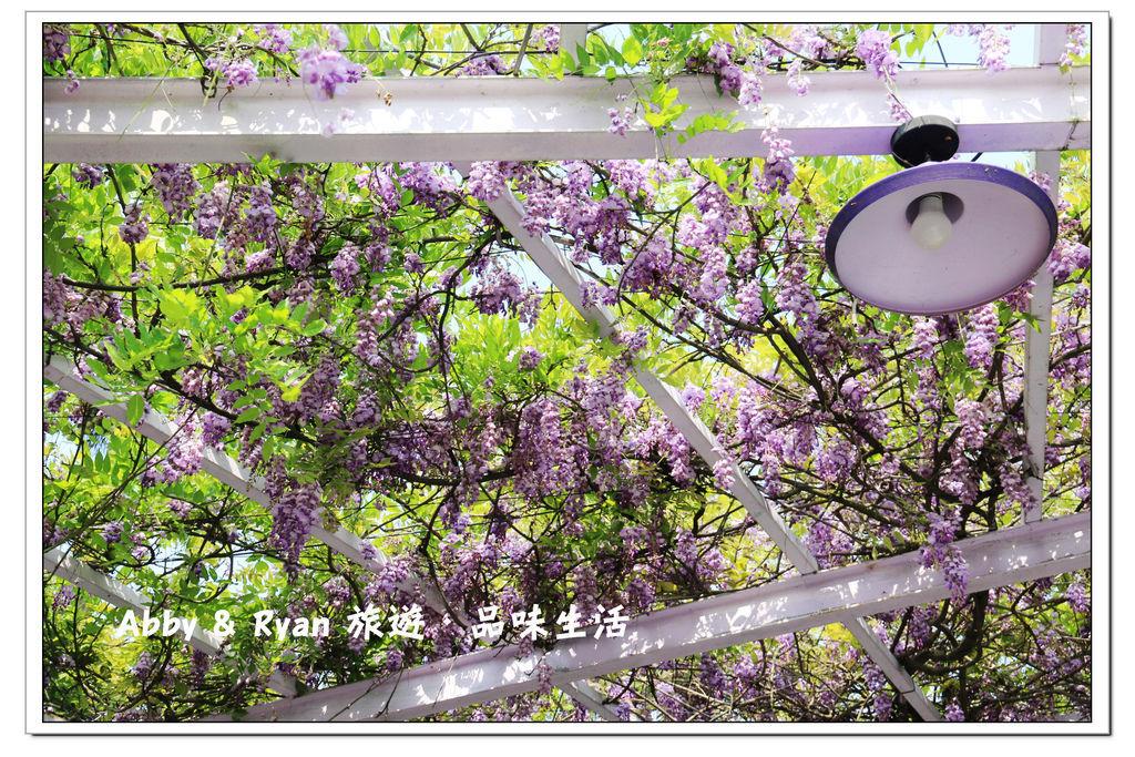 newIMG_0157.jpg