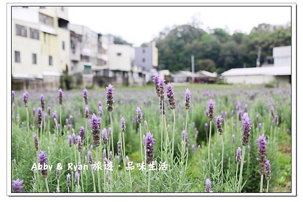 newIMG_0373.jpg