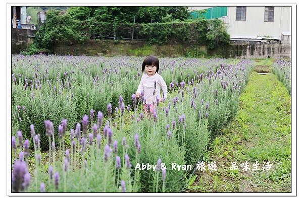 newIMG_0390.jpg