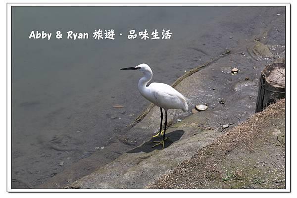 newIMG_0911.jpg