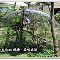 newIMG_0100.jpg